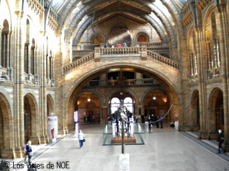 Natural History Museum 4