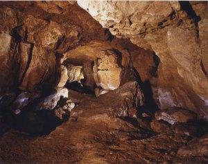 Interior de la Galería Final